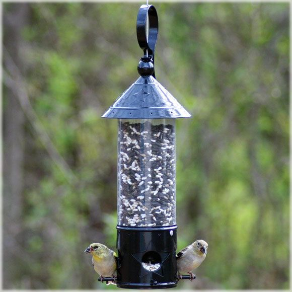 Avant Garden North Star Wild Bird Feeder