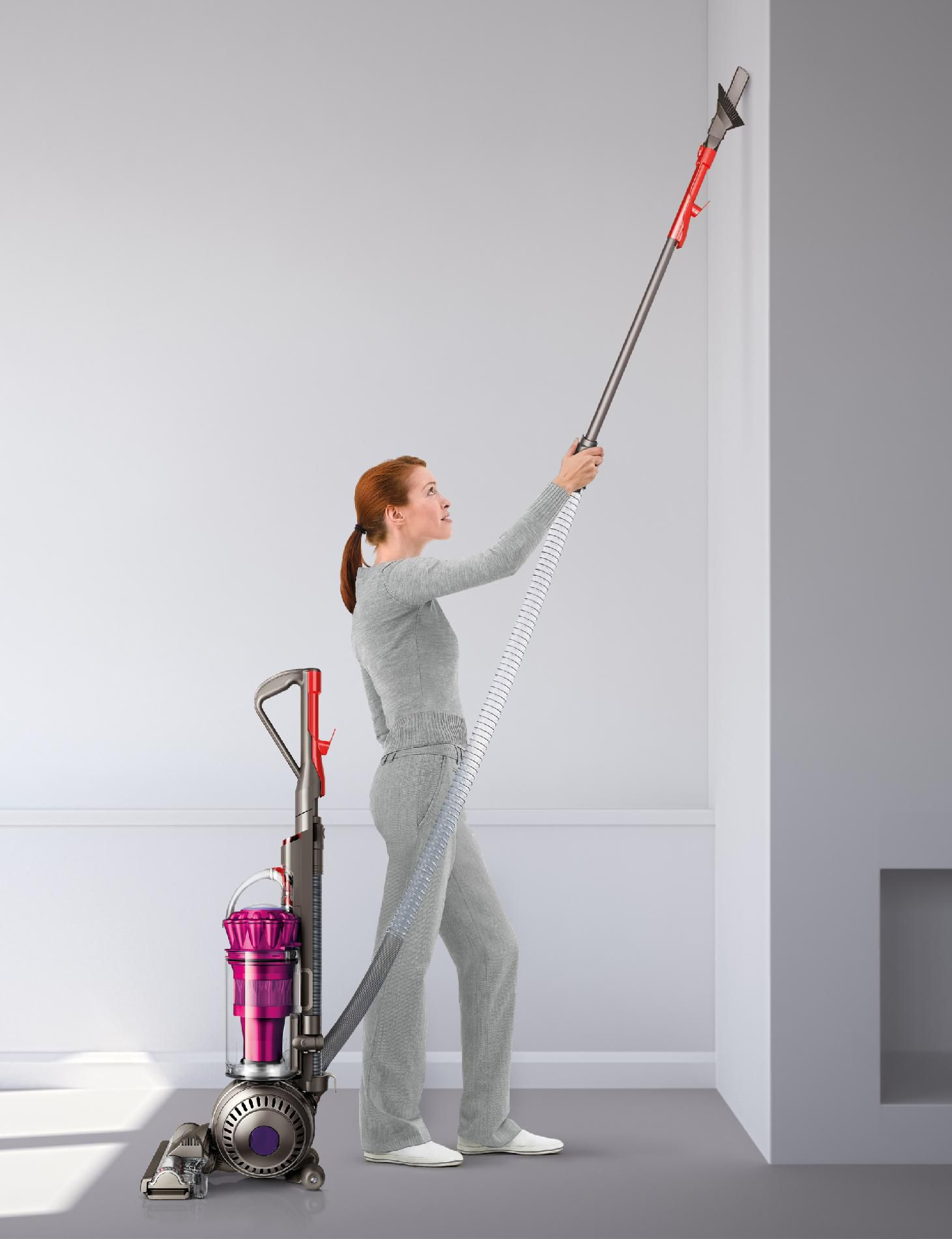 Dyson DC41 Animal Complete - CLOSEOUT