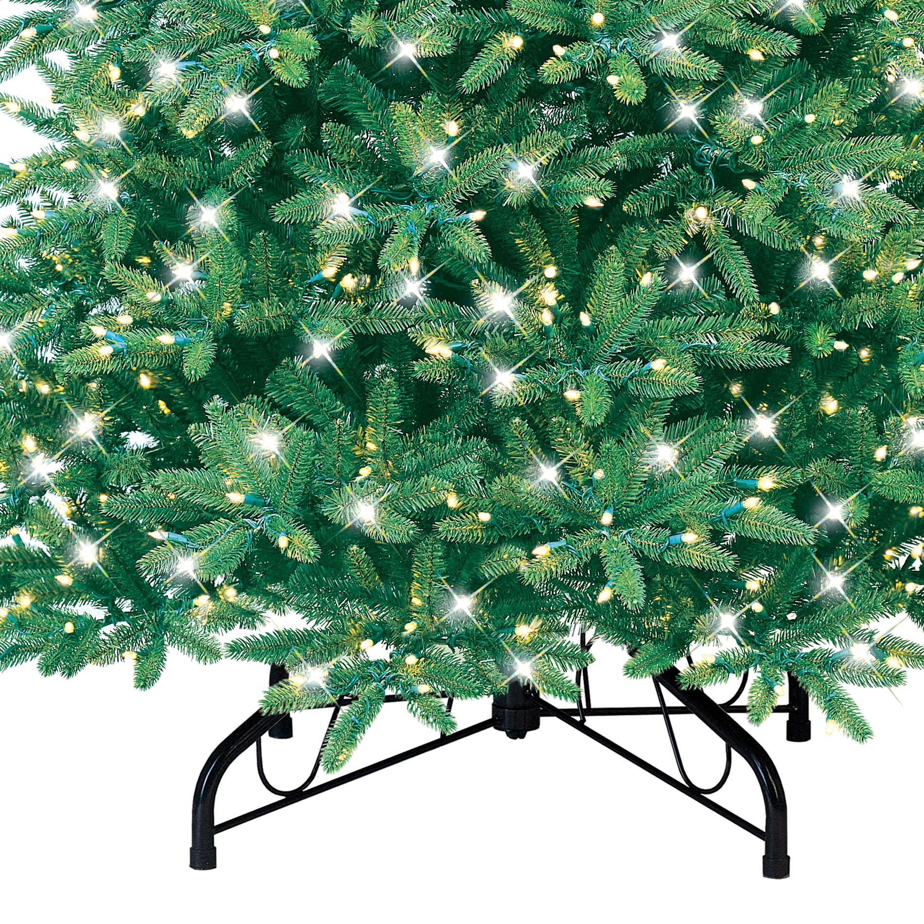 9' Pre-lit Natural Frasier Christmas Tree - 900 Light