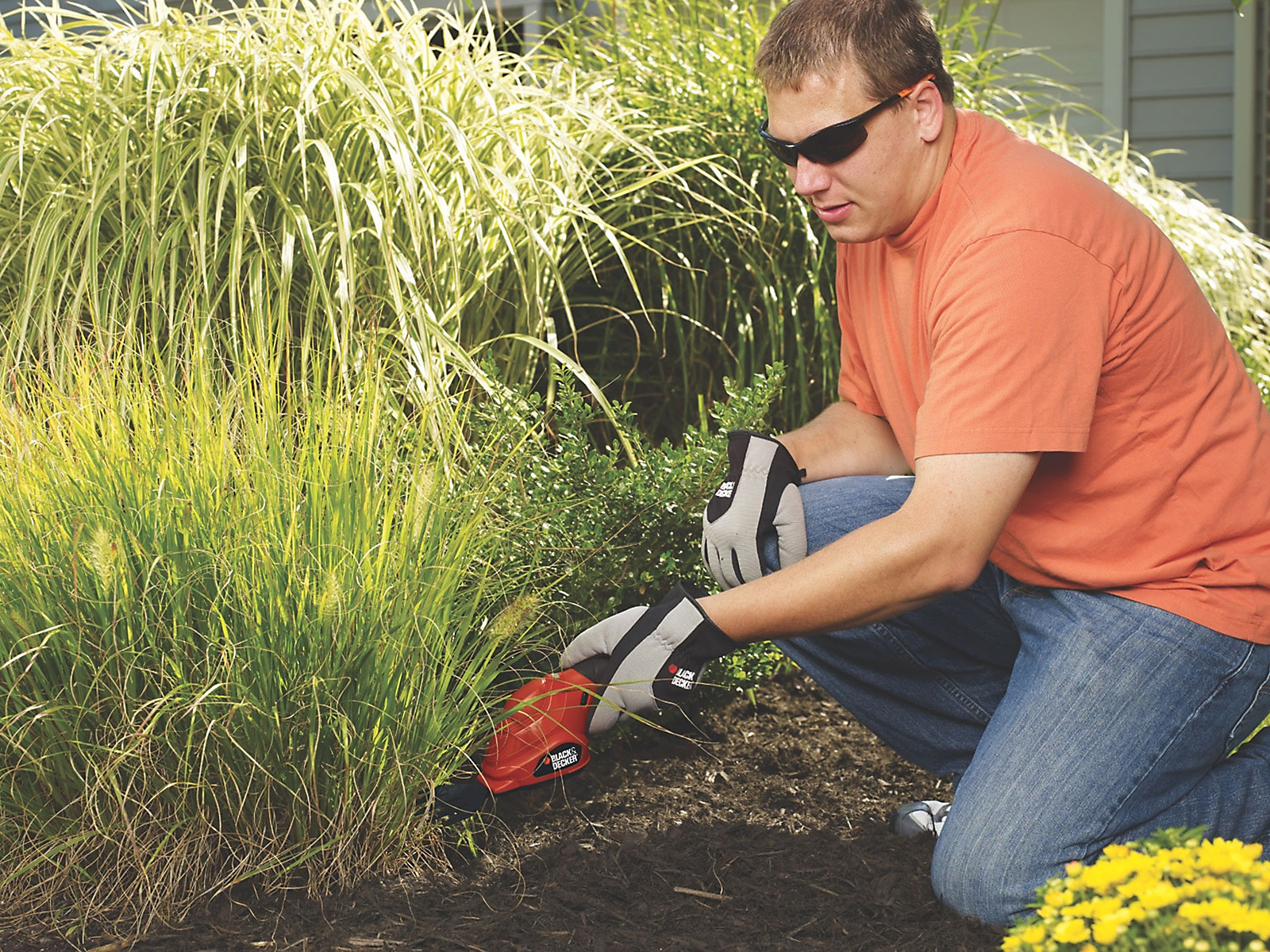 Black & Decker 3.6V Lithium Cordless Hedge Trimmer