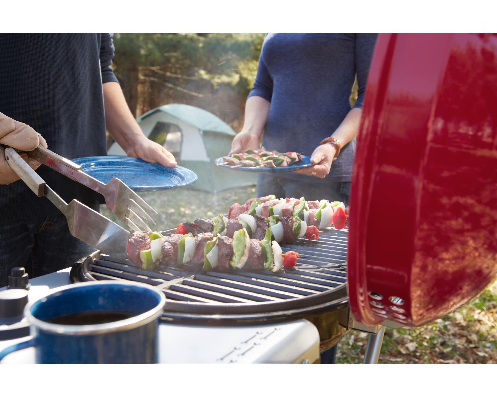Craftsman Portable Gas Grill