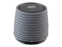 iLive Portable Wireless Speaker ISB212B