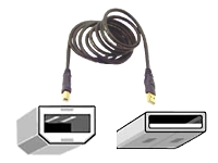 Belkin USB Cable, A/B, 6 ft.