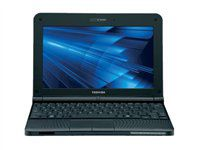 Toshiba Mini 10.1 inch Netbook- Blue